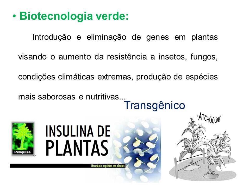 Biotecnologia verde: Transgênico