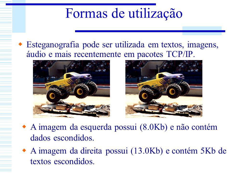 Formas de utilização Esteganografia pode ser utilizada em textos, imagens, áudio e mais recentemente em pacotes TCP/IP.