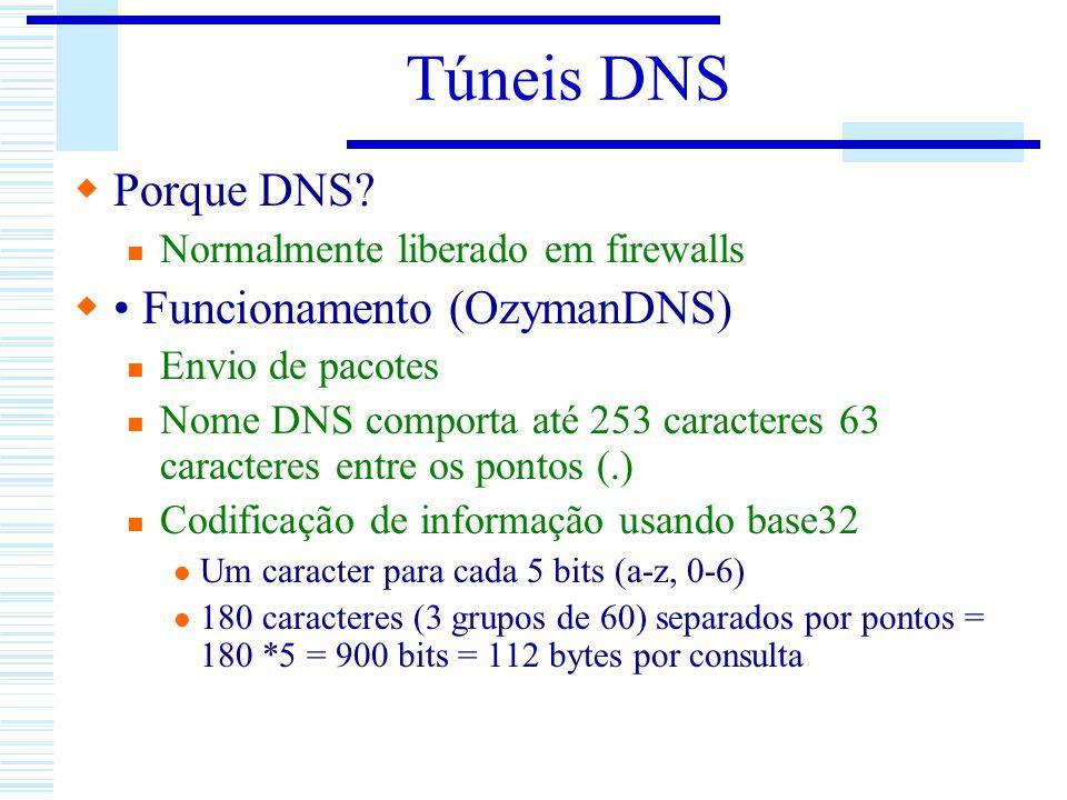Túneis DNS Porque DNS • Funcionamento (OzymanDNS)