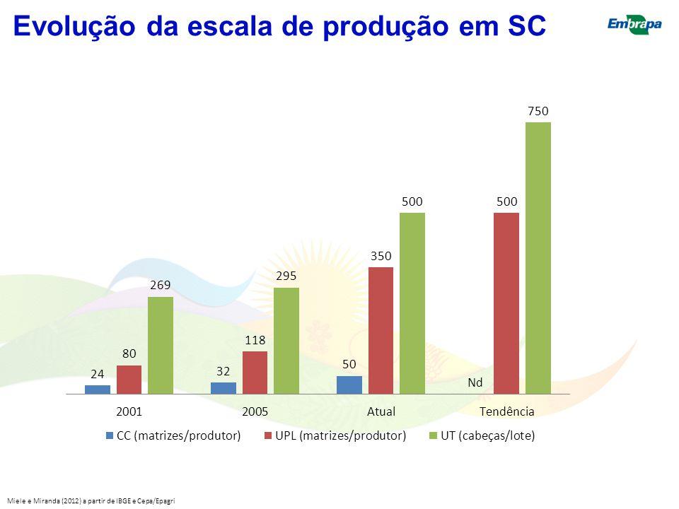 Evolução da escala de produção em SC