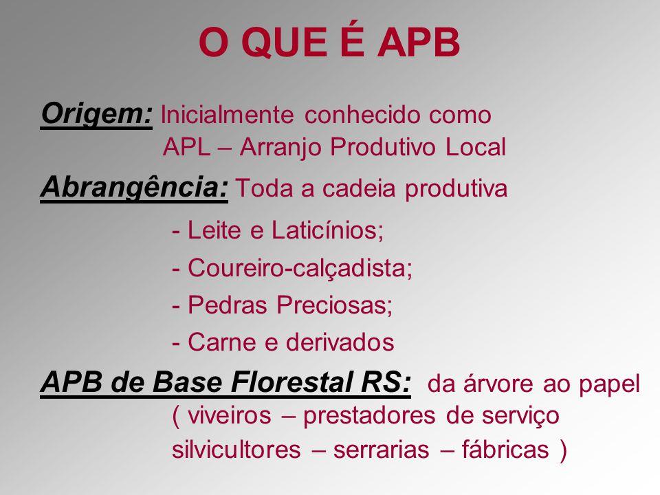 O QUE É APB Origem: Inicialmente conhecido como APL – Arranjo Produtivo Local.