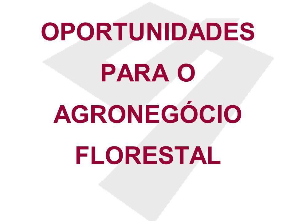 OPORTUNIDADES PARA O AGRONEGÓCIO FLORESTAL