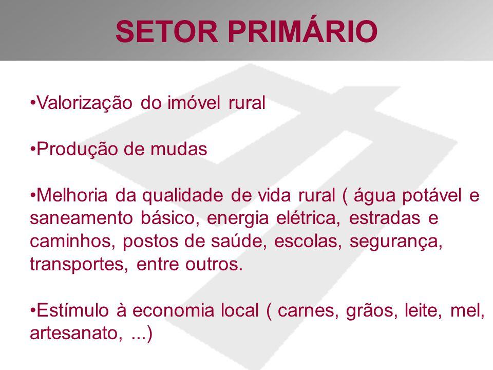 SETOR PRIMÁRIO Valorização do imóvel rural Produção de mudas