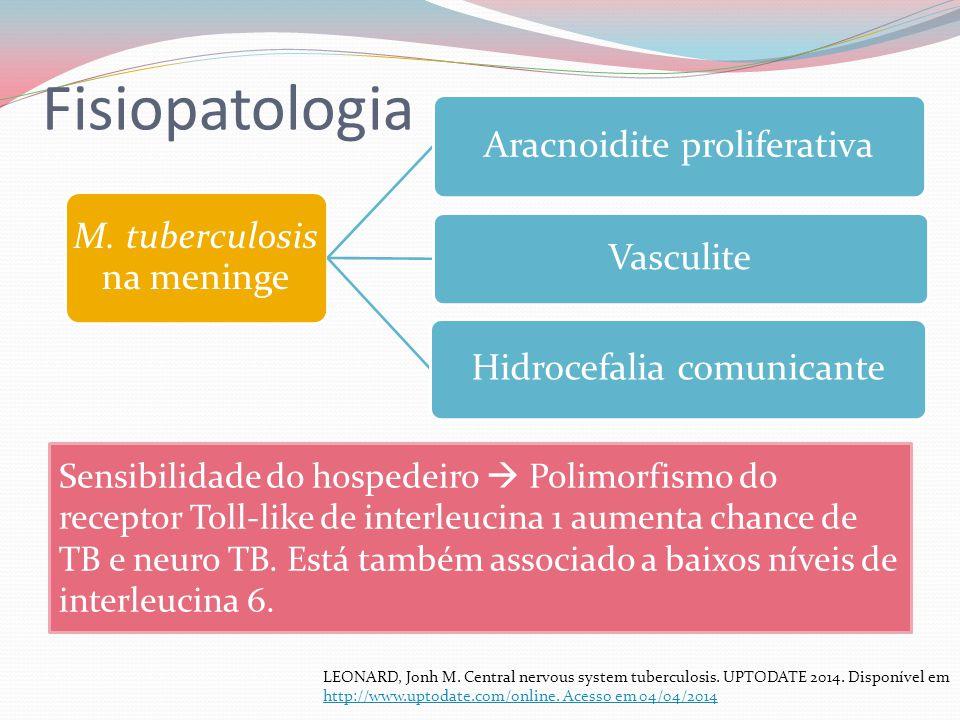 Fisiopatologia M. tuberculosis na meninge. Aracnoidite proliferativa. Vasculite. Hidrocefalia comunicante.