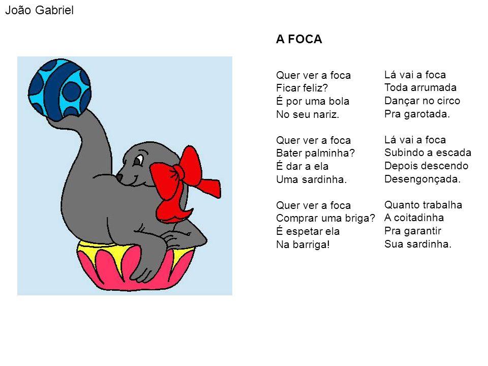 João Gabriel A FOCA.