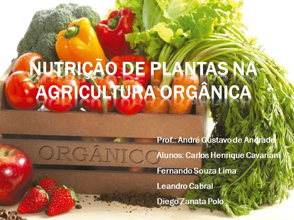 Nutrição de Plantas na Agricultura Orgânica