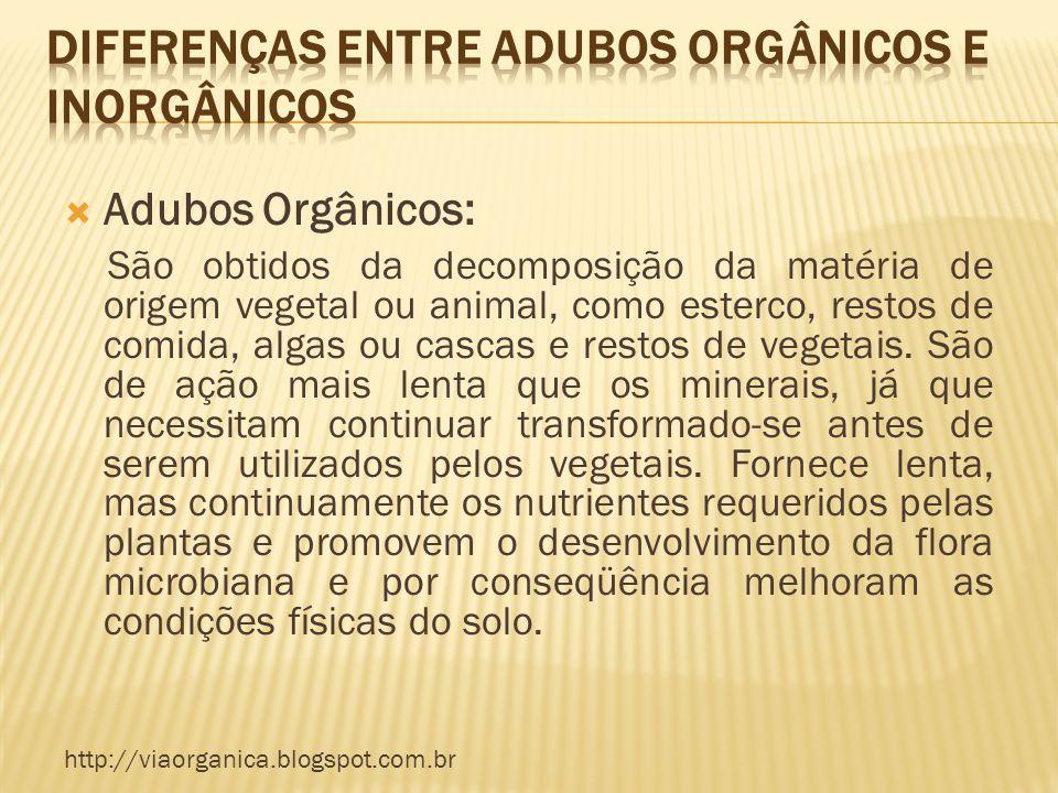 Diferenças entre Adubos Orgânicos e Inorgânicos