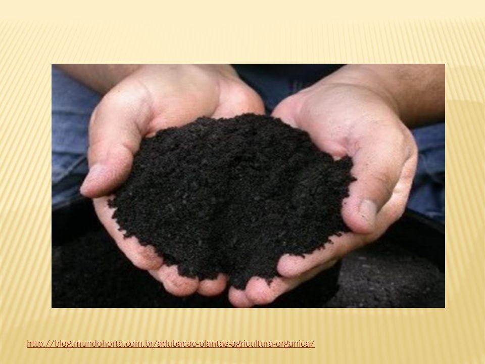 http://blog.mundohorta.com.br/adubacao-plantas-agricultura-organica/
