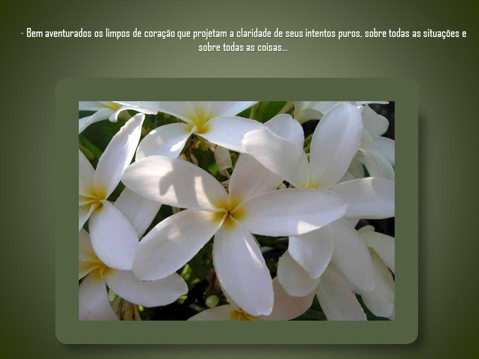 - Bem aventurados os limpos de coração que projetam a claridade de seus intentos puros, sobre todas as situações e sobre todas as coisas...