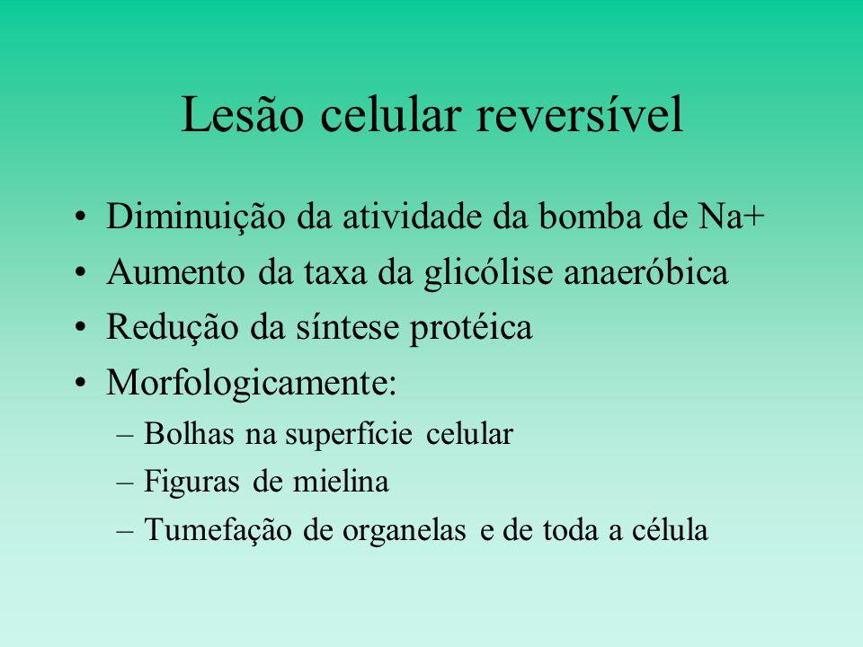 Lesão celular reversível