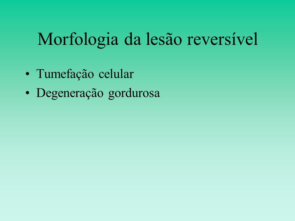 Morfologia da lesão reversível