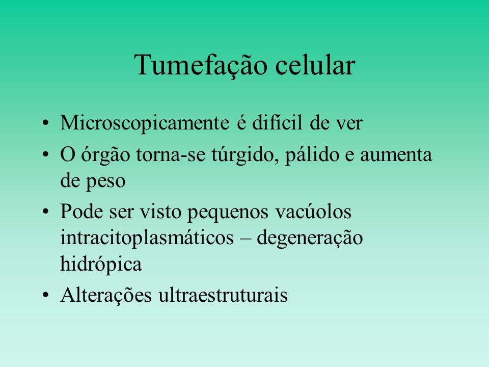 Tumefação celular Microscopicamente é difícil de ver