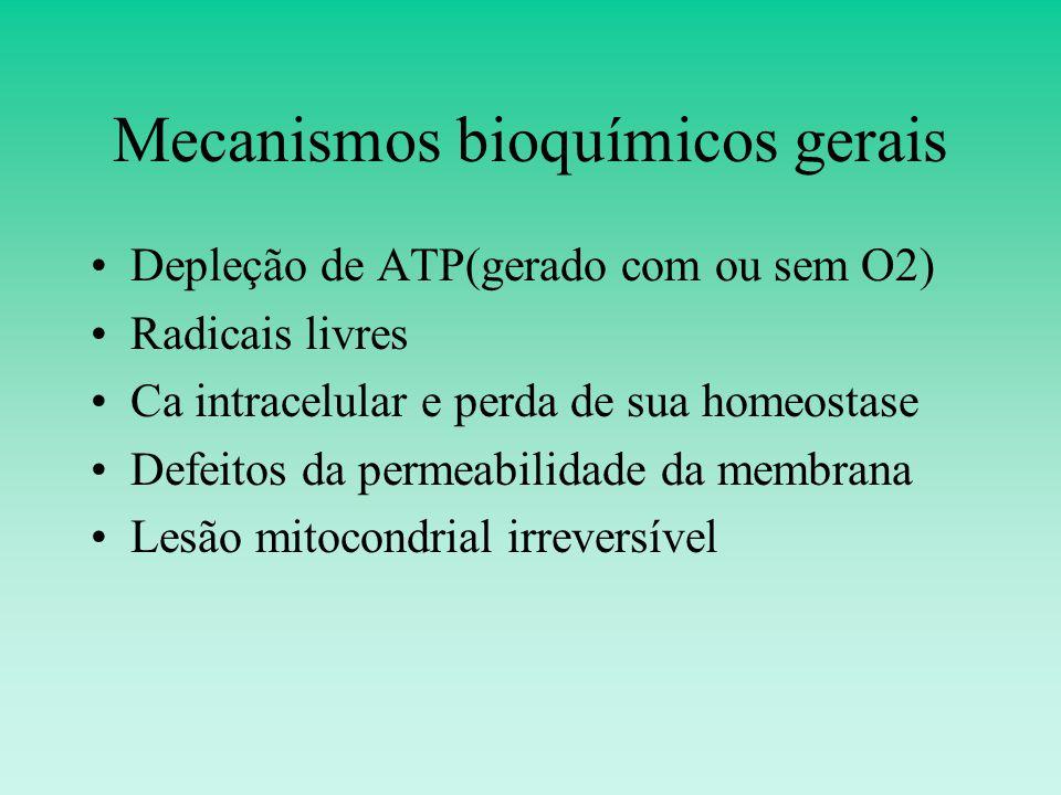 Mecanismos bioquímicos gerais