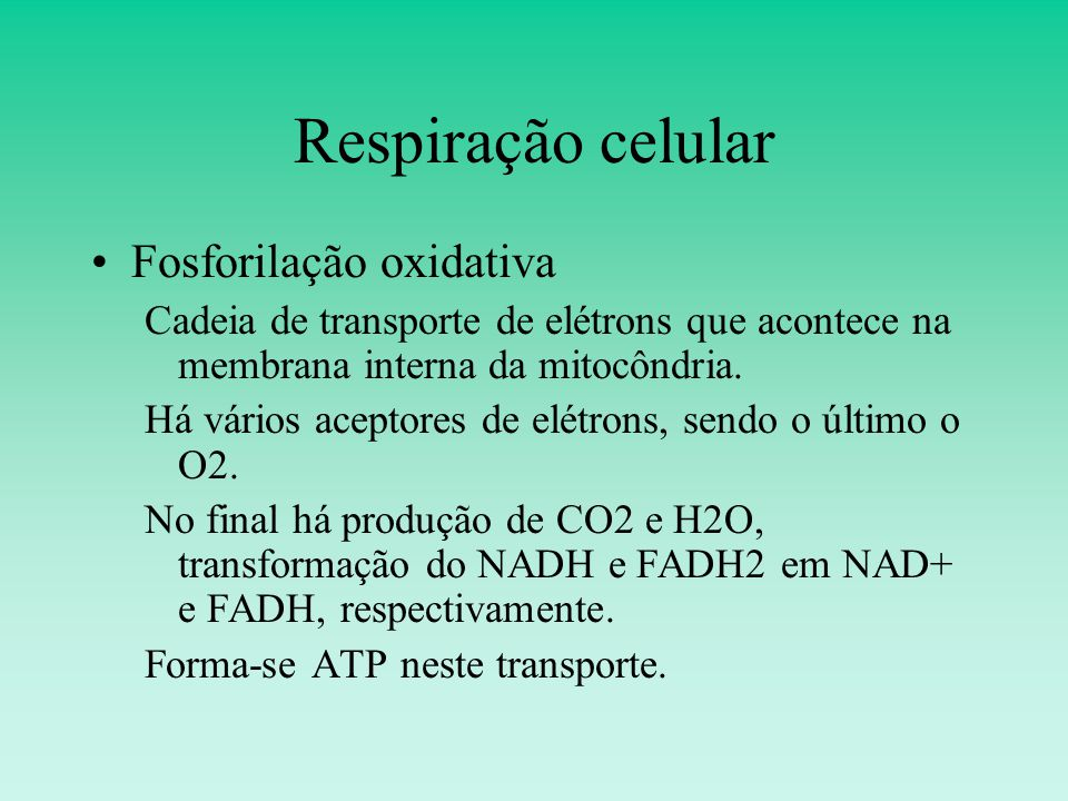 Respiração celular Fosforilação oxidativa