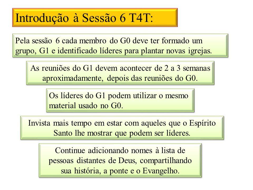 Introdução à Sessão 6 T4T: