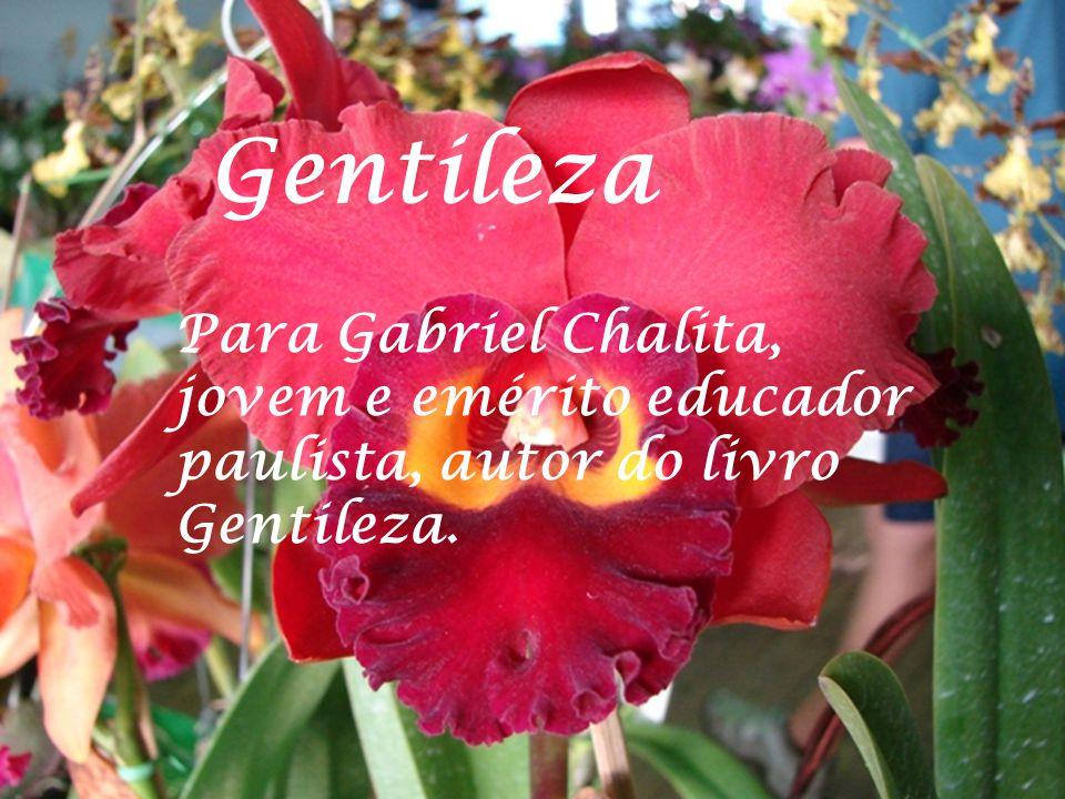 Gentileza Para Gabriel Chalita, jovem e emérito educador