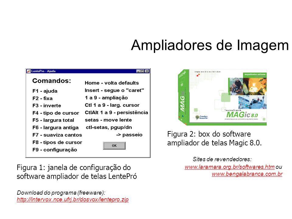 Ampliadores de Imagem Figura 2: box do software ampliador de telas Magic 8.0. Sites de revendedores: