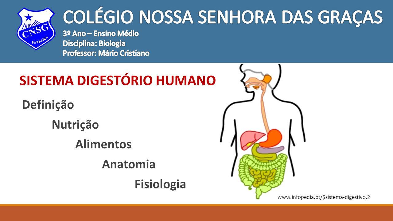 COLÉGIO NOSSA SENHORA DAS GRAÇAS