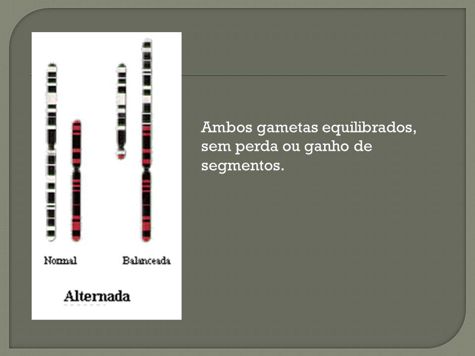 Ambos gametas equilibrados, sem perda ou ganho de segmentos.