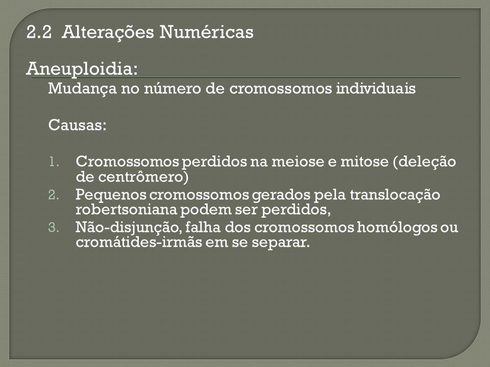 2.2 Alterações Numéricas Aneuploidia: