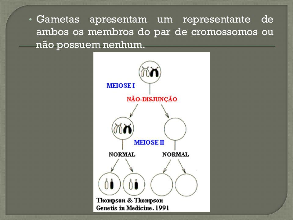 Gametas apresentam um representante de ambos os membros do par de cromossomos ou não possuem nenhum.