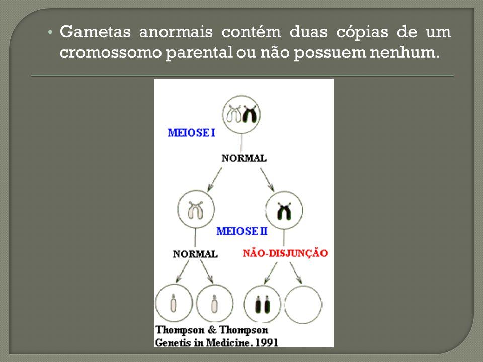 Gametas anormais contém duas cópias de um cromossomo parental ou não possuem nenhum.