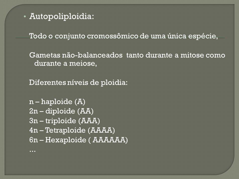 Autopoliploidia: Todo o conjunto cromossômico de uma única espécie,