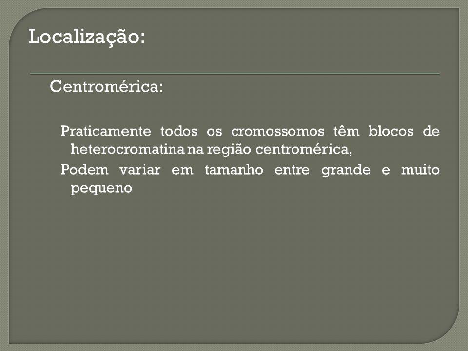 Localização: Centromérica:
