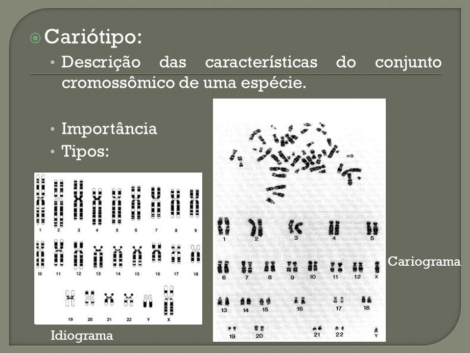 Cariótipo: Descrição das características do conjunto cromossômico de uma espécie. Importância. Tipos: