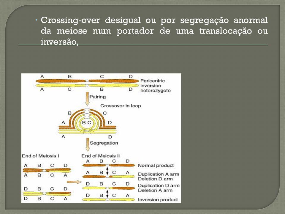 Crossing-over desigual ou por segregação anormal da meiose num portador de uma translocação ou inversão,