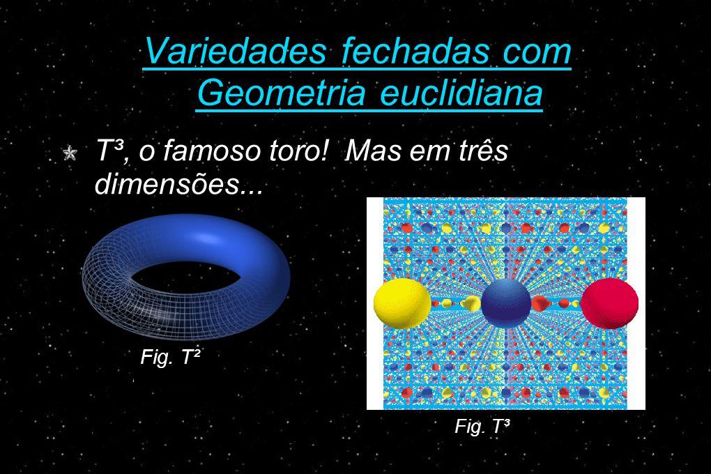 Variedades fechadas com Geometria euclidiana