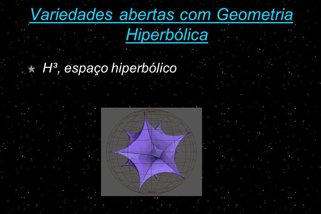 Variedades abertas com Geometria Hiperbólica