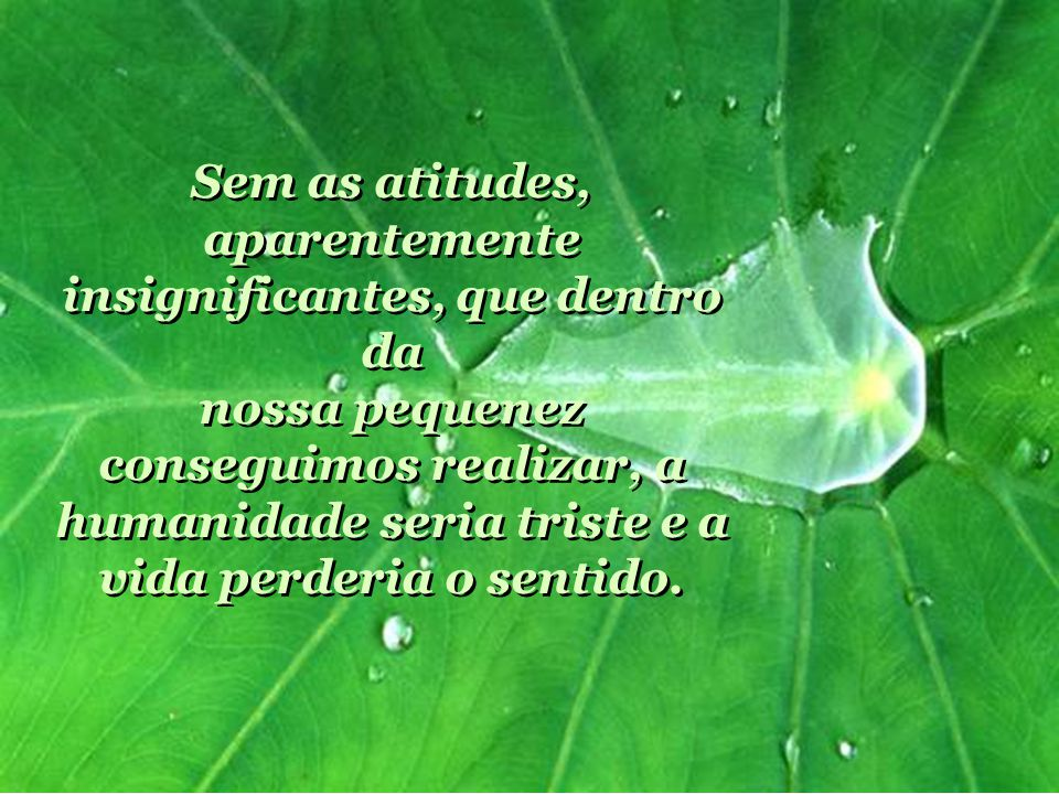 Sem as atitudes, aparentemente insignificantes, que dentro da nossa pequenez conseguimos realizar, a humanidade seria triste e a vida perderia o sentido.