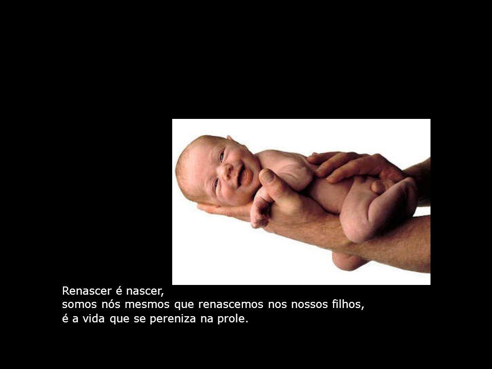 Renascer é nascer, somos nós mesmos que renascemos nos nossos filhos, é a vida que se pereniza na prole.