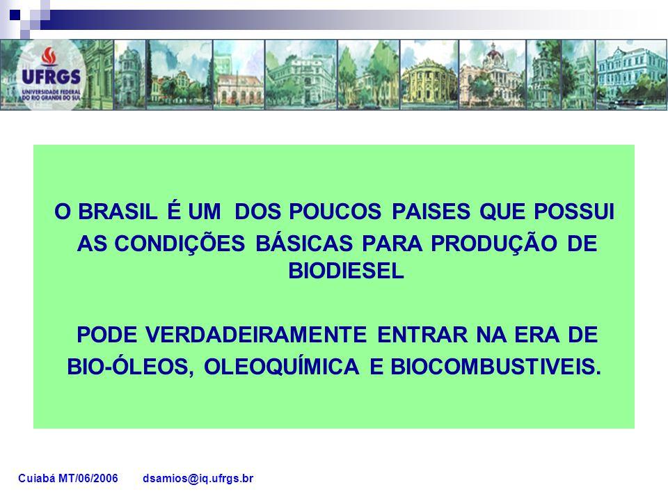 O BRASIL É UM DOS POUCOS PAISES QUE POSSUI
