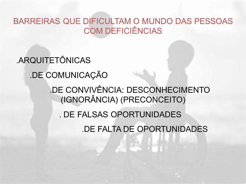 BARREIRAS QUE DIFICULTAM O MUNDO DAS PESSOAS COM DEFICIÊNCIAS