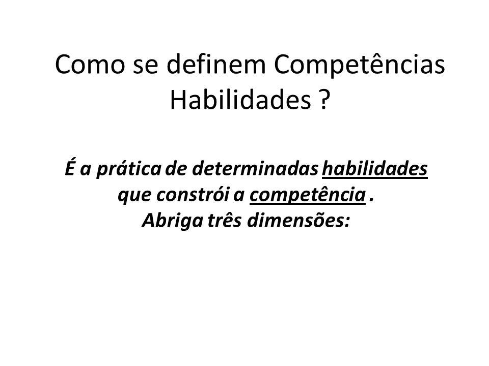 Como se definem Competências Habilidades