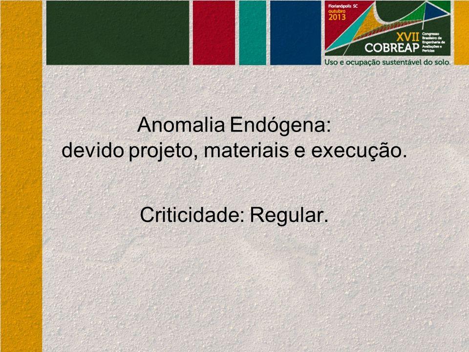 Anomalia Endógena: devido projeto, materiais e execução.
