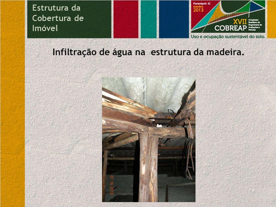 Infiltração de água na estrutura da madeira.