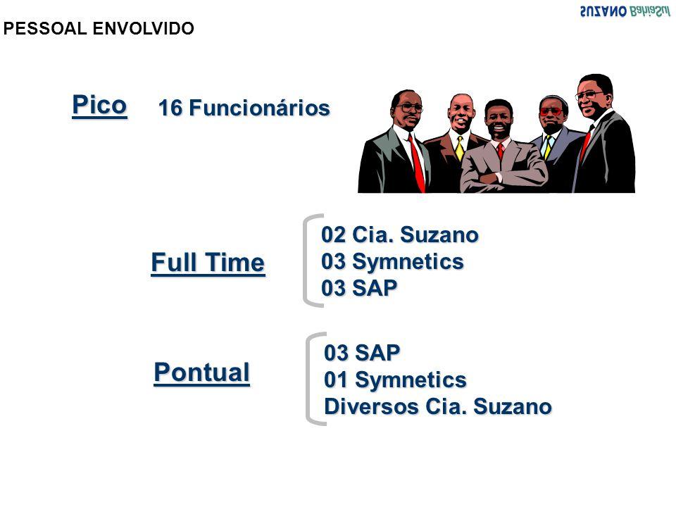 Pico Full Time Pontual 16 Funcionários 02 Cia. Suzano 03 Symnetics