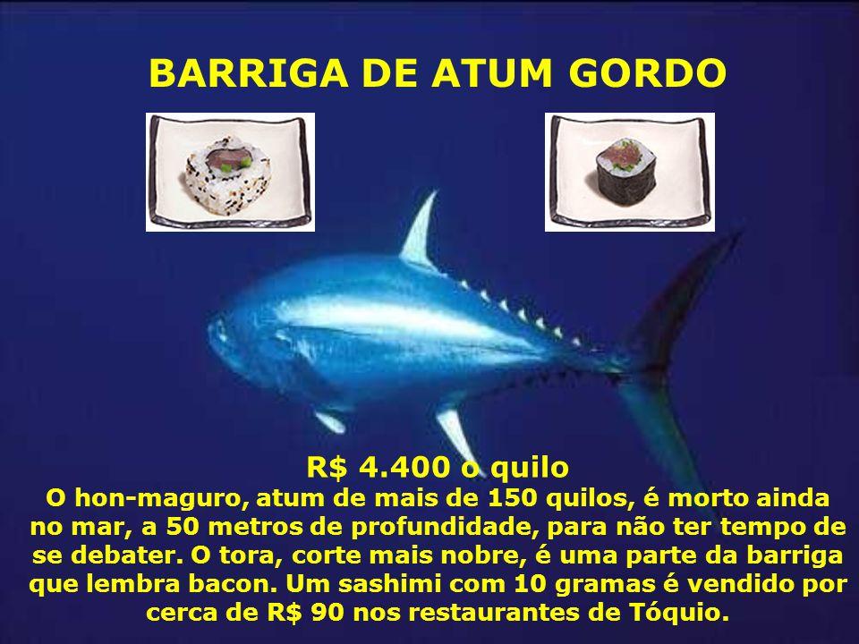 BARRIGA DE ATUM GORDO