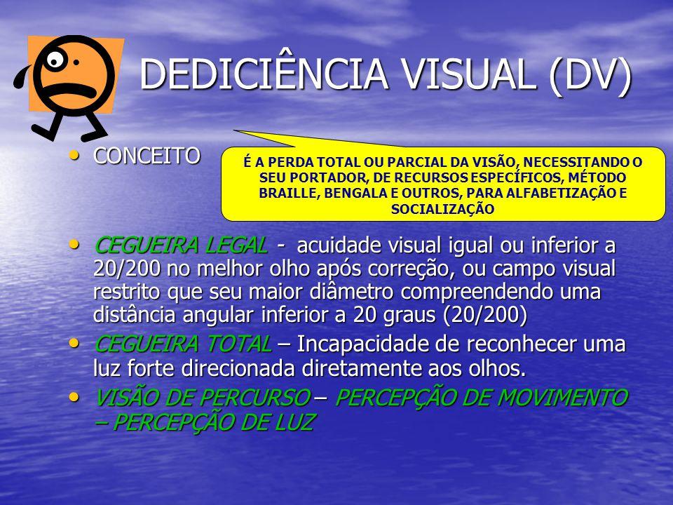 DEDICIÊNCIA VISUAL (DV)