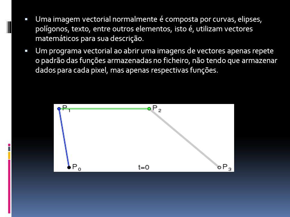 Uma imagem vectorial normalmente é composta por curvas, elipses, polígonos, texto, entre outros elementos, isto é, utilizam vectores matemáticos para sua descrição.
