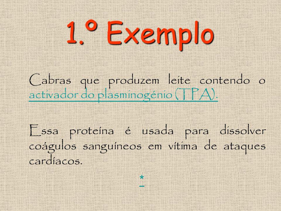 1.º Exemplo Cabras que produzem leite contendo o activador do plasminogénio (TPA).