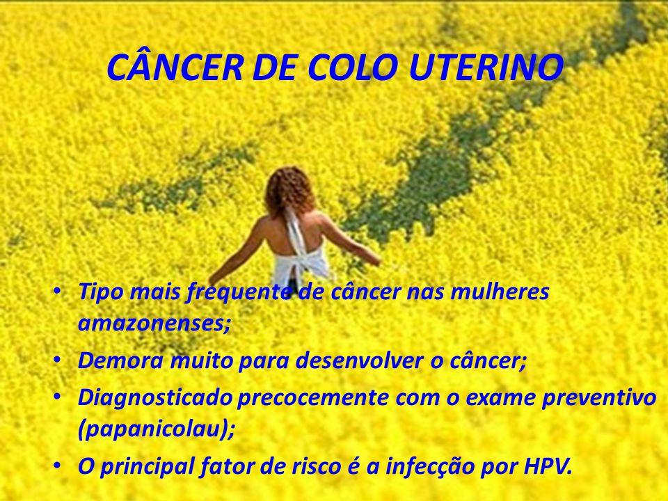 CÂNCER DE COLO UTERINO Tipo mais frequente de câncer nas mulheres amazonenses; Demora muito para desenvolver o câncer;