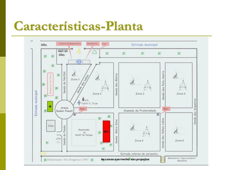 Características-Planta