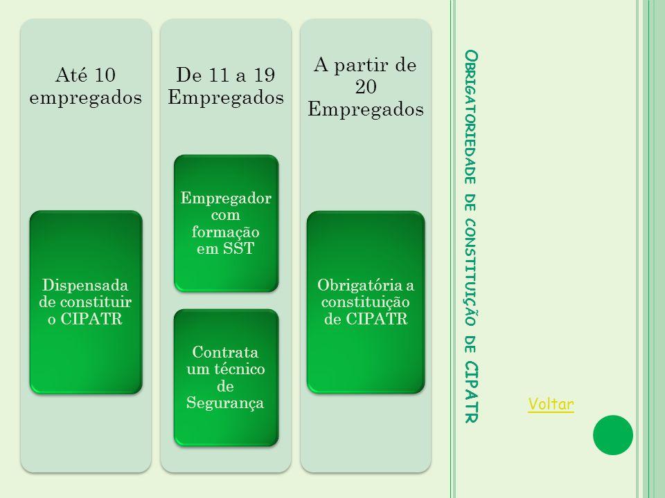 Obrigatoriedade de constituição de CIPATR