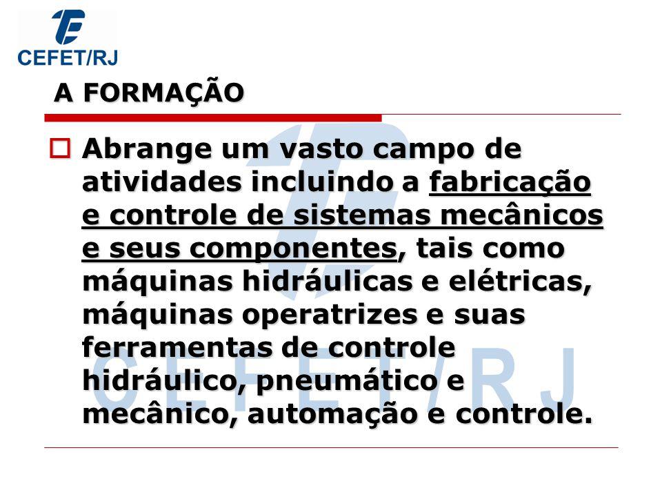 A FORMAÇÃO C E F E T / R J.