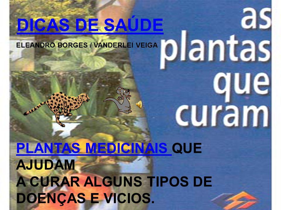 DICAS DE SAÚDE PLANTAS MEDICINAIS QUE AJUDAM