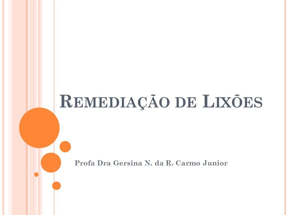 Profa Dra Gersina N. da R. Carmo Junior